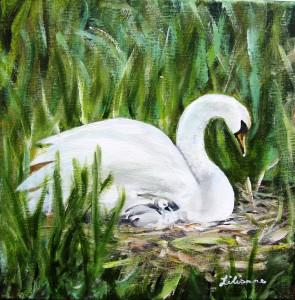 Schwan im Nest, Acryl, 30 x 30 cm