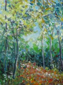Lebendige Wald